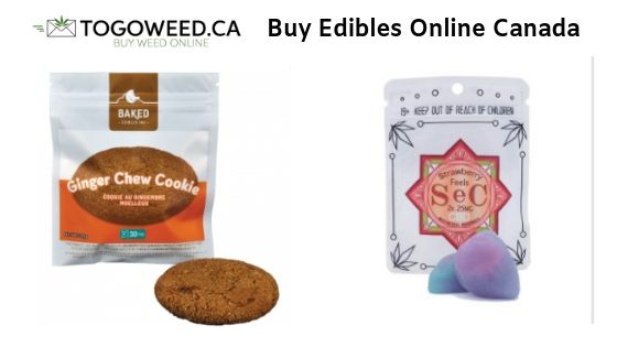 Reasons Why People Buy Edibles Online Canada As a New Level of Medicine