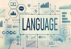 pharmacovigilance translation